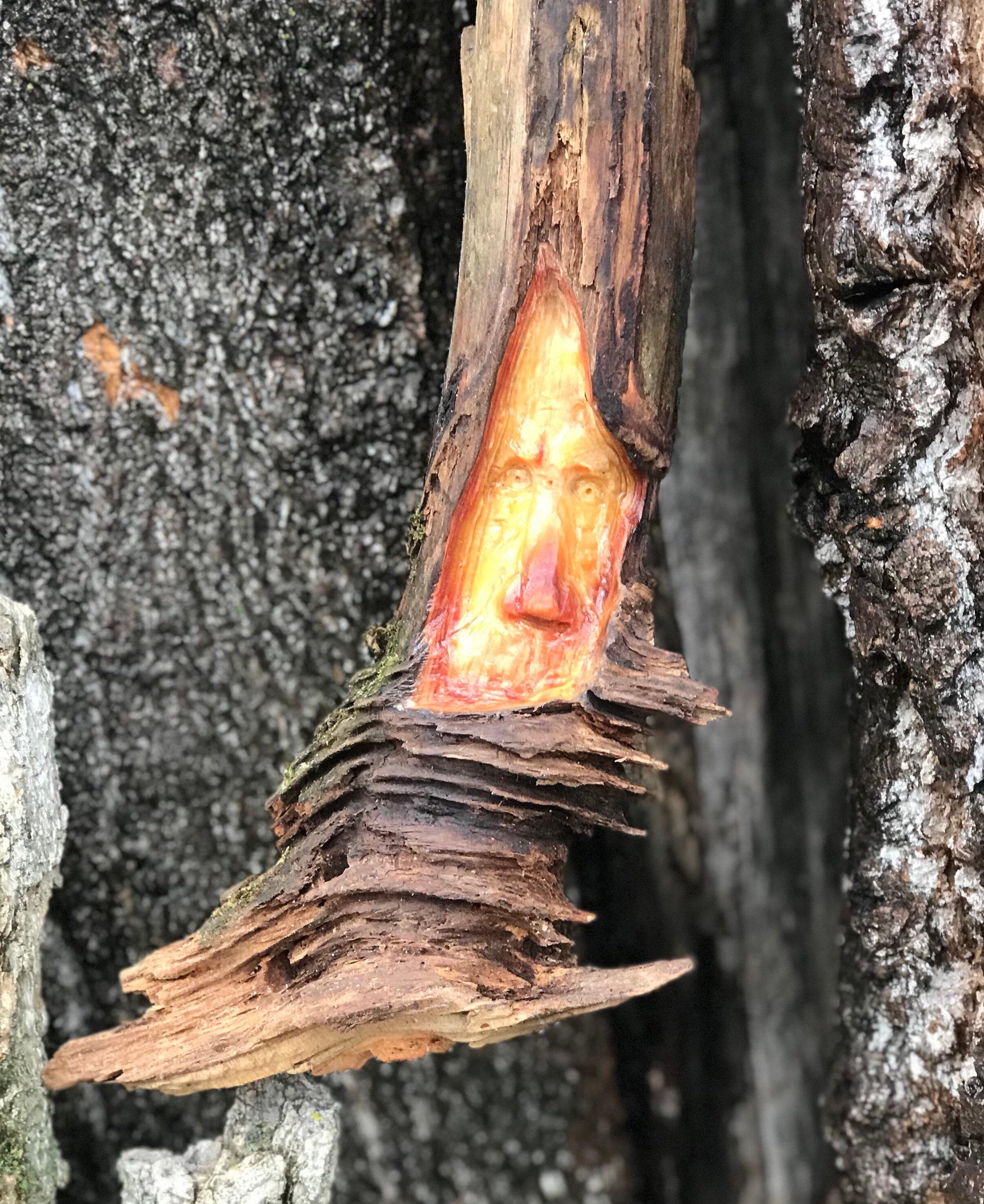 Wood Spirit Tree Spirit Pine Knot Gnome Carving