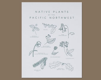 Native Plants of the Pacific Northwest Letterpress Botanical Art Print 8x10