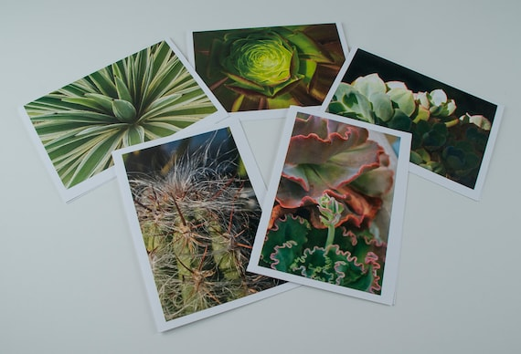 "5""x7"" photo greeting cards series of succulents and cactus."