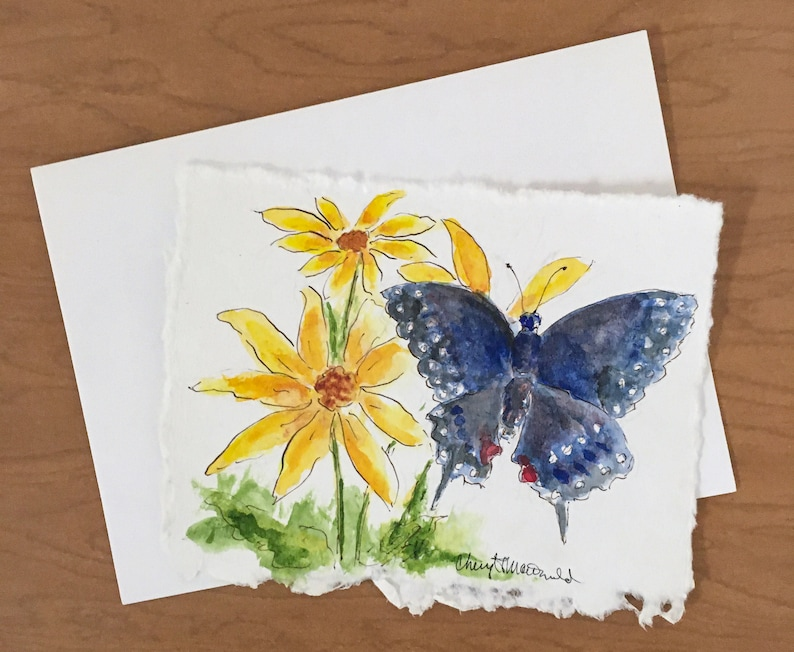 A Black Swallowtail Butterfly enjoying Yellow daisies in the image 0