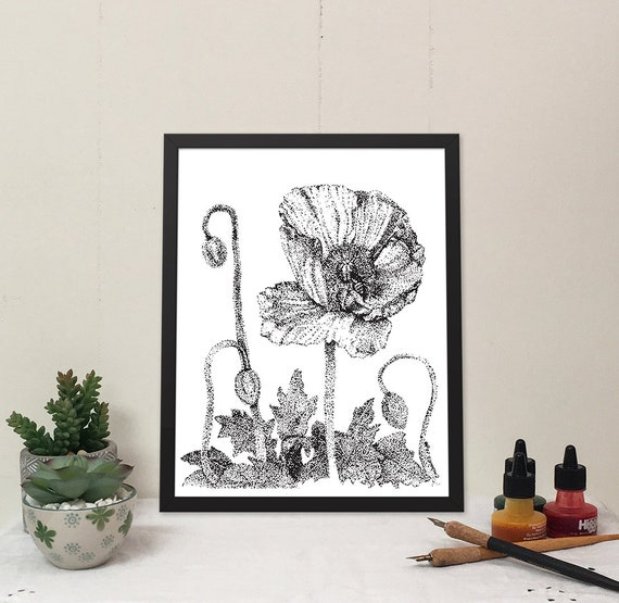 11x14 matted print of Iceland Poppies stippled pen & ink drawing