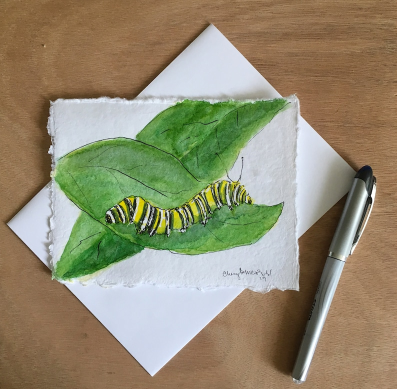 This Monarch Caterpillar on a milk weed leaf is perfect for a image 0
