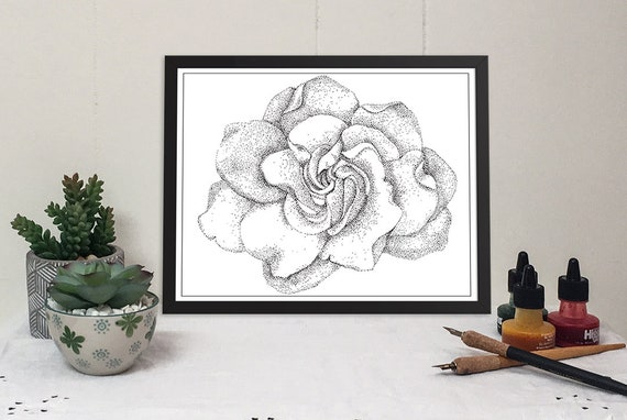 11x14 matted print of a gardenia bloom stippled pen & ink drawing