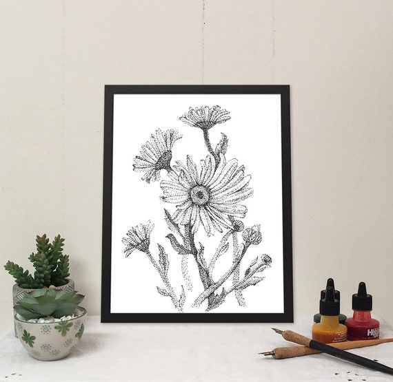 11x14 matted print of a bunch of daisies stippled pen & ink drawing