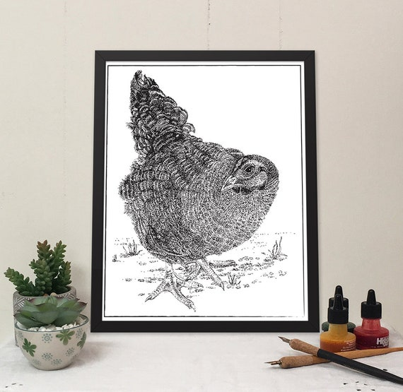 Black and white pen and ink stippled drawing of a little black hen in the yard.
