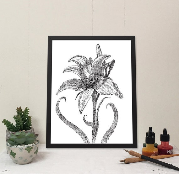 11x14 matted print of a Day Lily stippled pen & ink drawing