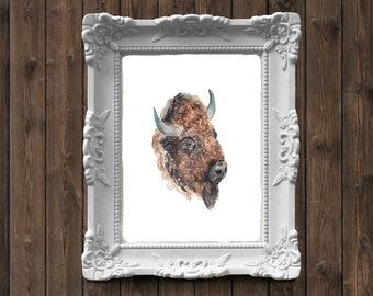 American Bison Buffalo Head Watercolor Painting - art print