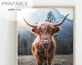 Highland Cow Wall Art, Scotland Highland Cow Print Download, Boho Animal Prints, Scotland Cow Art, Highland Cow Digital Print Cow With Horns