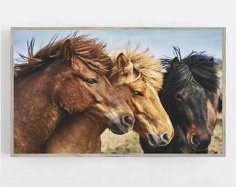 Samsung Frame TV Art, Horse Western Wall Art, Frame TV Art, Horse Wall Decor, Modern Farmhouse Wall Art, Digital DOWNLOAD, Digital Art Tv