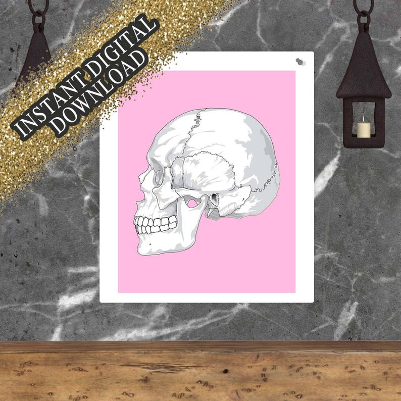 Pink and White Urban Skull Print Instant Digital Download image 0