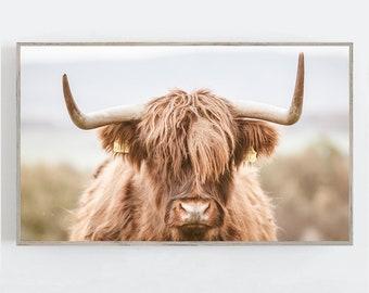 Samsung Frame TV Art, Highland Cow Farmhouse Wall Art, Frame TV Art, Background, Modern Farmhouse Wall Art, Digital DOWNLOAD, Digital Art Tv