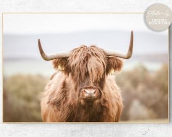 Highland Cow Wall Art, Scotland Highland Cow Print Download, Boho Animal Print, Farmhouse Cow Art, Highland Cow Digital Print Cow With Horns