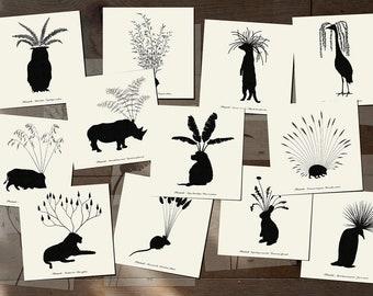 "Animals Plants Art Cards - Planimals - Set of 12 postcards - Illustration postcard 14,8cm x 14,8cm (5,8"" x 5,8"")"