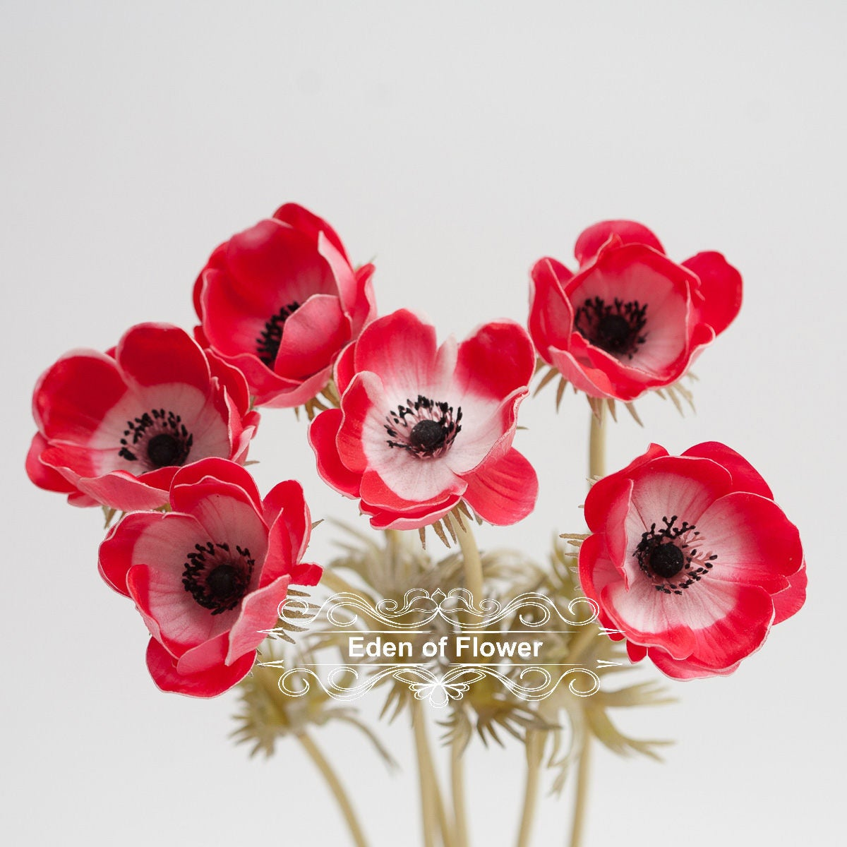 Red Anemones Poppy Real Touch Flowers Black Purple Center For