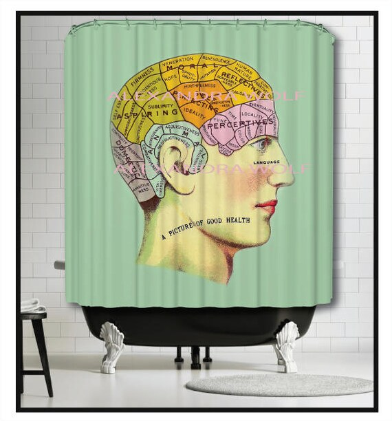 Brain Shower Curtain Anatomy Vintage