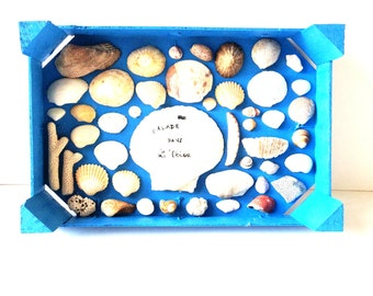 Tableau, SHELL-- Painted wooden box and multiple shells, Une Balade dans l'Océan by All Things Natural