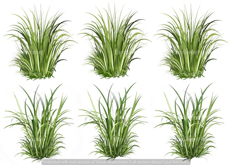 Basic Grass Decals Sectioned Grass Decals Realistic Grass image 0