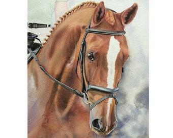 Custom Horse Painting, Dressage Horse Portrait, Hanoverian Horse Watercolor, Equine Art, Custom Horse Art, Watercolor Horse, Equine Portrait