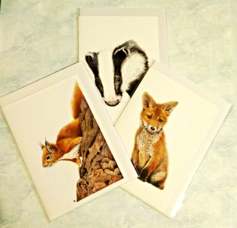 Animal Greetings Cards, collection of 3, Fox Cub, Badger and Red Squirrel