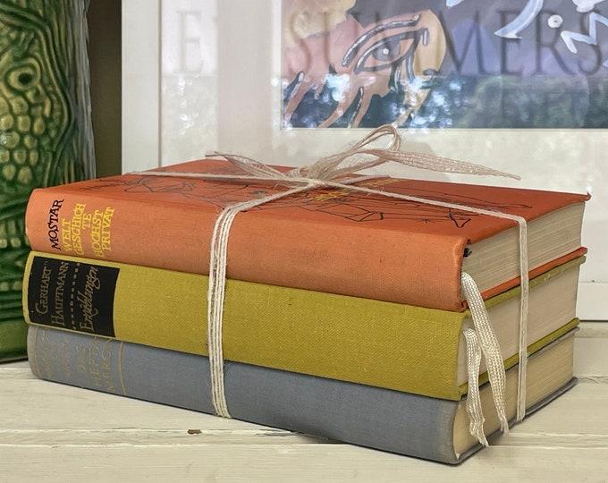 Vintage Multicolored Book Bundle. German language books, home decor,office decor,book lover, blue decor, vintage books, library, shelf decor
