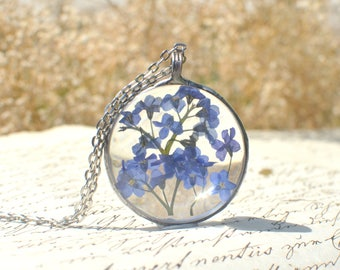 Large FORGET ME NOT terrarium pendant, made to order, round necklace, periwinkle blue, pressed flower, myosotis, scorpion grass, very meadow