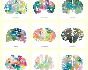 """Set of 9 Brain Art Prints - 12"""" x 12"""" Watercolor Artwork - Colorful Neurology, Neuroscience and Psychology Wall Decor and Gifts"""