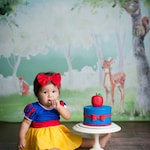 Standard shipping One Piece Baby, Girl's dress, SNOW WHITE  costume birthday outfit inspired dress with a matching headband Included!