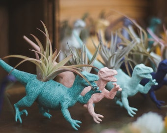 Customize Your Own Large Dinosaur Planter + Air Plant; Dinosaur Planter; Home Decor; Desk Accessory; Office Planter; Gift; Dorm