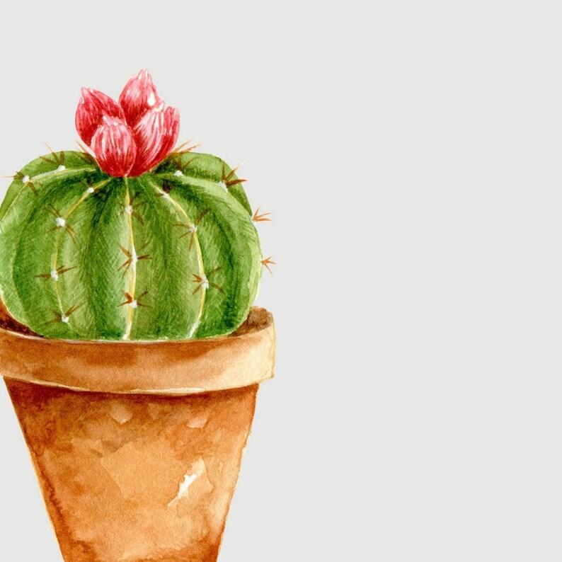 Succulent Taste interior d\u00e9cor art sticker decal by The Fox in the Attic