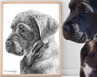 Custom Pet Portrait , Custom Dog Portrait Digital download, Gift for her   Gift for him   Custom cat portrait   Dog memorial Mom gift