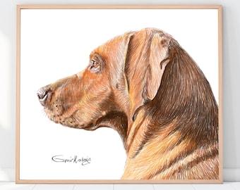 Custom Pet Portrait | Custom dog portrait | Custom cat portrait | Portrait from photo | Drawing from photo, Pet Sympathy Gift, Dog memorial