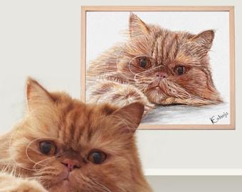 Cat Portrait Custom and Dog Portrait custom | Custom Cat Drawing Gift for pet lovers | Pet portrait custom | pet memorial drawing