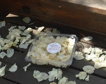 Dried cream Bougainvillea flower petals, Wedding Confetti, gorgeous featherweight dried scarlet petals.