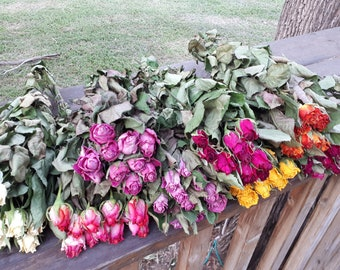 Air dried roses with stems. A bunch of 10 real dried roses. Come in different colors.