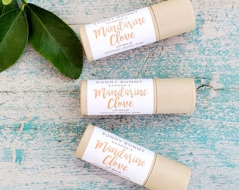 Vegan Chapstick, Mandarin Clove Lip Balm, Autumn Chapstick, Organic Cosmetics, Vegan Lip Balm, Self Care Lip Balm, Natural Skin Care Gift