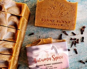 Pumpkin Spice Soap, Autumn Soap, Zero Waste Cosmetics, Raw Vegan Soap, Organic Skin Care, Self Care Soap, Artisan Soap, Vitamin C Soap