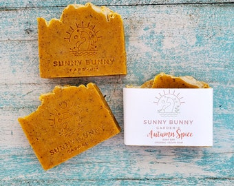 Soaps Organic Pumpkin  | Vegan Pumpkin Bar Soap | Food For Skin | Pumpkin Soap For Healthy Skin | Pure and Natural Skin Care | Skinfood Soap
