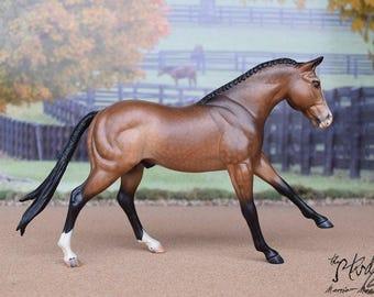 Custom/CM Breyer Model Horse - Welsh/QH Cross Stallion, Cute Performance Prospect!