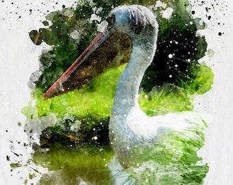 Pelican - Photographic Watercolor Style Wall Art, Fine Art Print