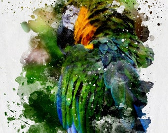 Parrot - Photographic Watercolor Style Wall Art, Fine Art Print