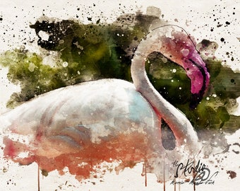 Flamingo - Photographic Watercolor Style Wall Art, Fine Art Print