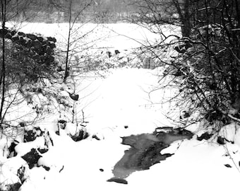 Whitnall Park Dam Black and White photo