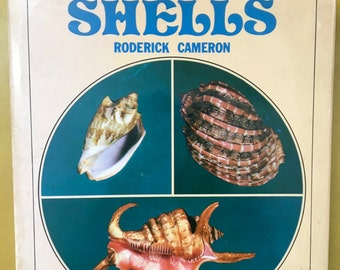 shells - 1970s hardcover book - vintage nature book