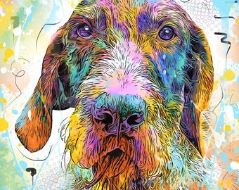 German Wirehaired Pointer Print