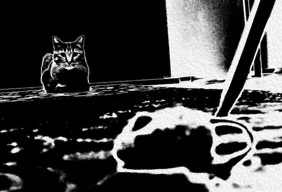 Cat and Mouse Print