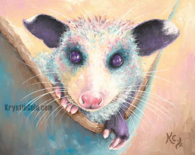 Baby Opossum Print