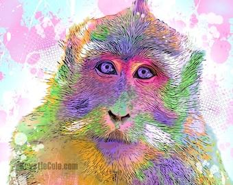 Cyno Monkey Print