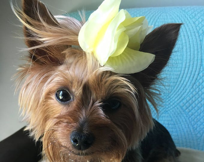 Handmade Hair bows for dogs/ Flower bows/ Cute bows for girl dogs/ Summer Dog bows