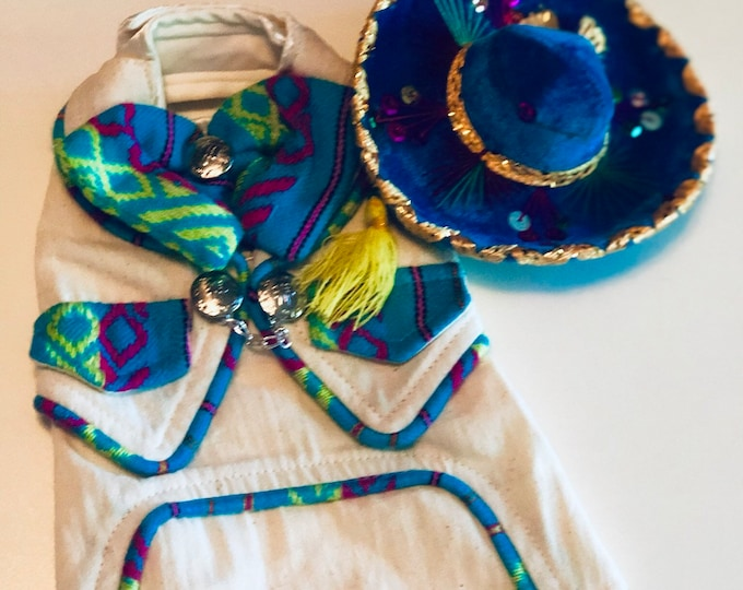 Mariachi dog girl/ Mariachi costume for dog girl/ Cinco de Mayo dog girl outfit/ Mariachi dog costume
