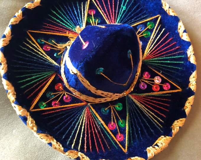 Mexican dog Sombreros / Mariachi dog hats / Mexican Sombreros for dogs / Sombreros para Cinco de Mayo